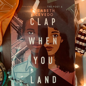 Clap When you Land - Review