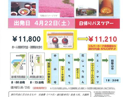 平成29年4月22日(土) 「中山寺と芝桜・日帰りバスツアー」