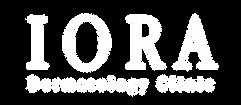 white transparent logo.png