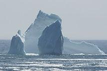 Icebergs Hiking Newfoundland