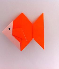 דג מאוריגמי