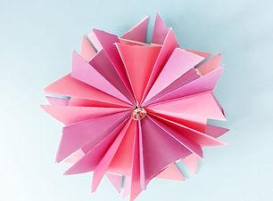 פרח כוכב דגם2.jpeg