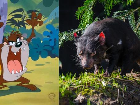 10 animales raros famosos de caricaturas, en la vida real