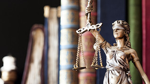 Law Firm Preferences: Civil Rights Practice Group Podcast