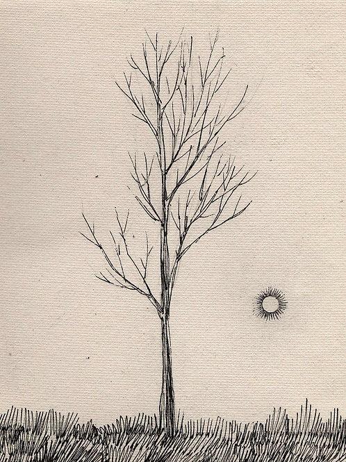 It is By the Dead Tree