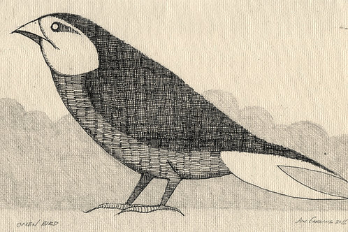 Omen Bird