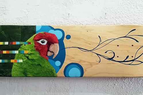 Skate Deck- Parrot