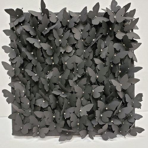 Coal Drift