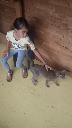Lexy & Grayson 08.2014