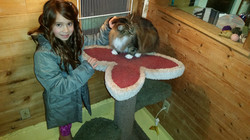 Lexy & Mini December.2014