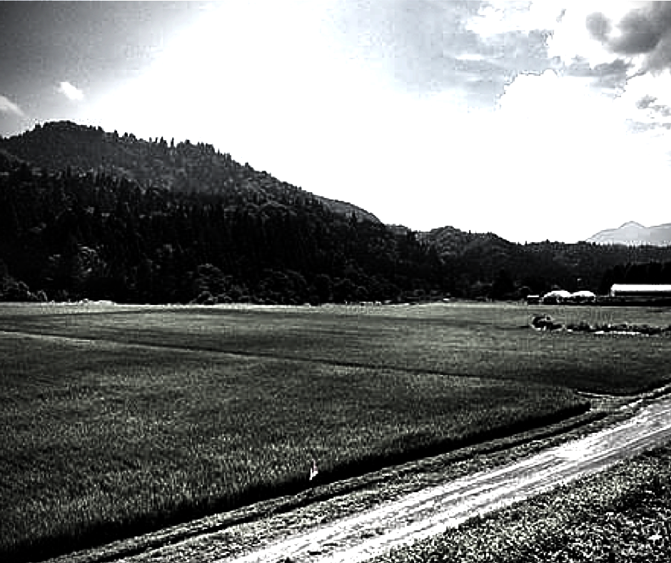 秋田県大館市比内町にある佐藤則久農園について