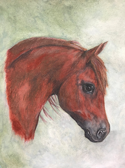 Original Chestnut Arab Horse Head Painting
