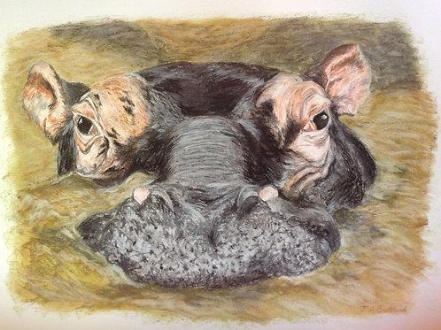 Original Hippo 'Wallow'