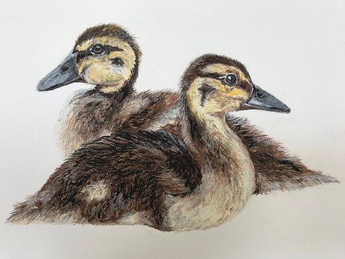 Original 'The Ducklings' on Cream