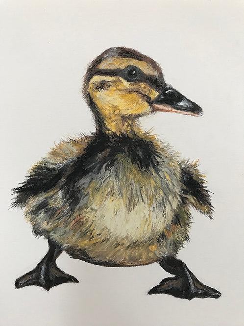 Original Duckling on Cream