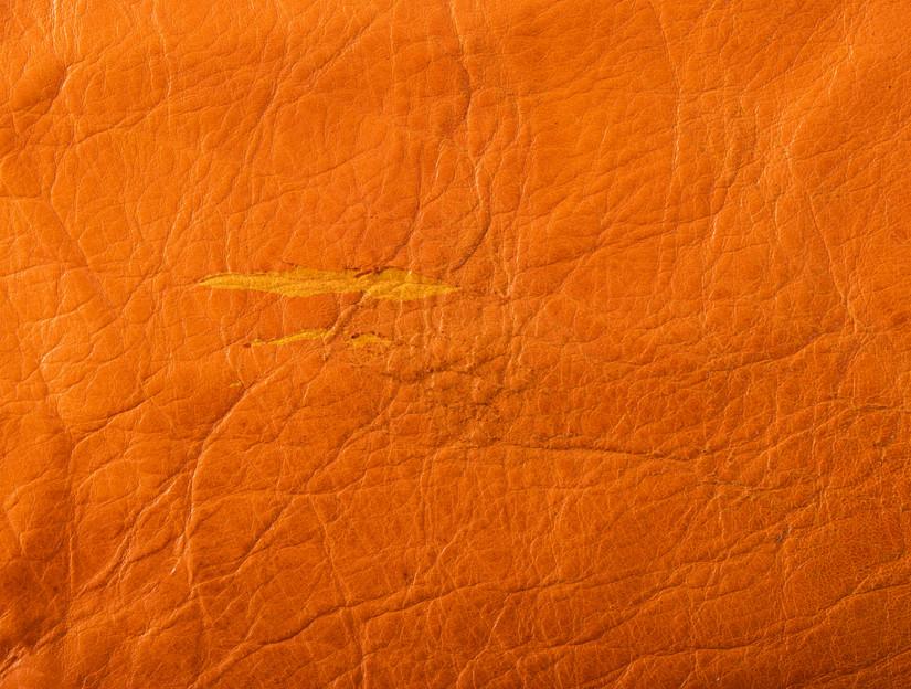 Rudysheldrake Eggshell grainside detail 4