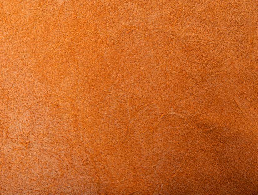Rudysheldrake Eggshell grainside detail 3