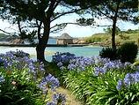 Île aux fleurs