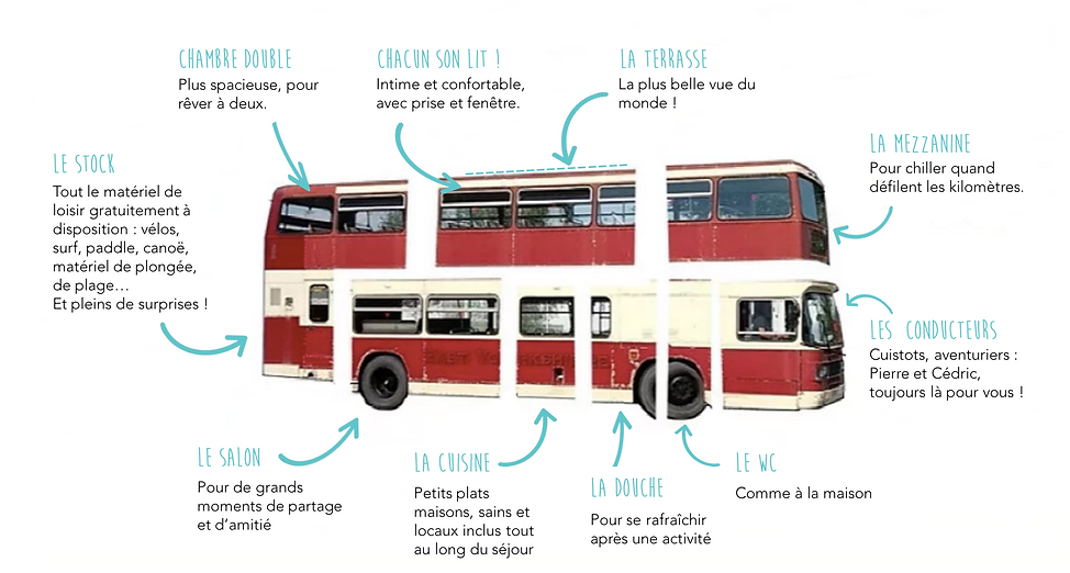répartition_bus_new.png