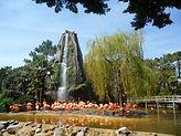 Zoo de Palmyre
