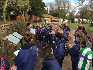 Primary Science at Fota - 9 March 2017