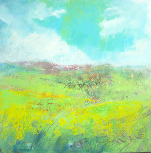 Buttercups, Ribblesdale card