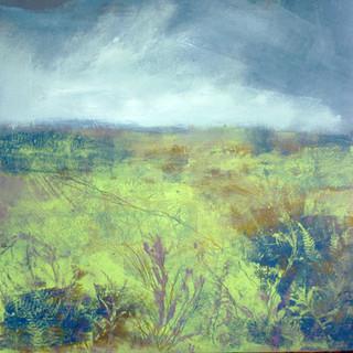 Spring Moor SOLD