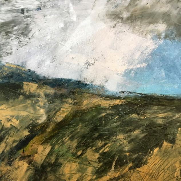 Windy Winter Moor