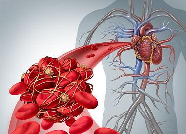 naczynia_krwionosne.jpg