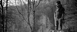deer-music