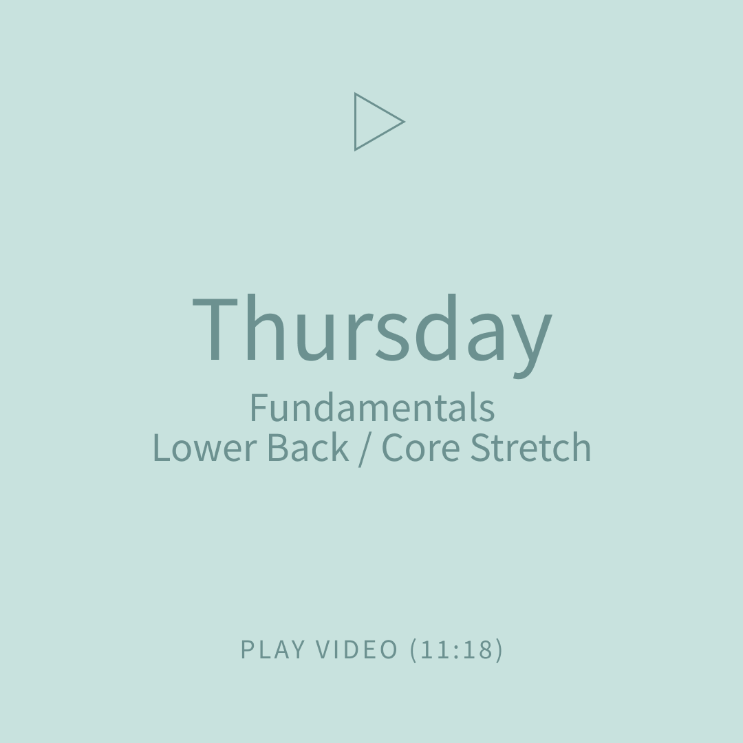 06-Thursday-FundamentalsLowerBackCoreStr