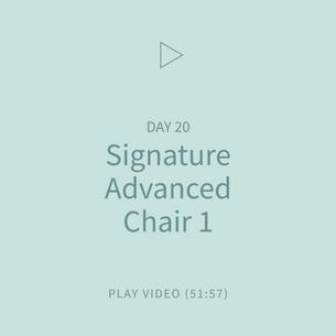 38-Signature-AdvancedChair1.png