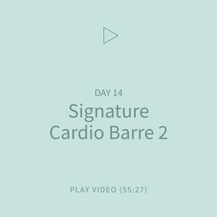 19-Signature-CardioBarre2.jpg