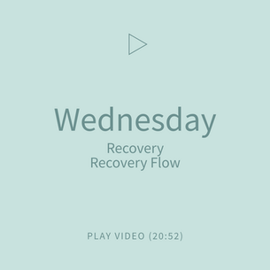 04-Wednesday-RecoveryFlow.png