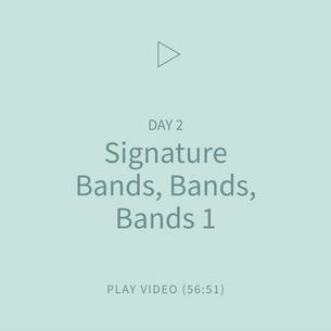 03-Signature-BandsBandBands1.png