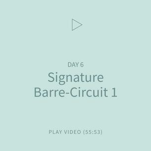 12-Signature0BareeCircuit1.png