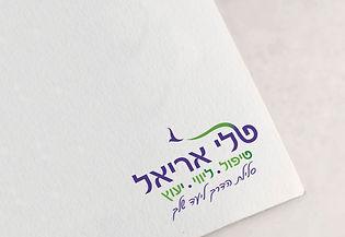 עיצוב לוגו ומיתוג עסקי לטלי על נייר לוגו