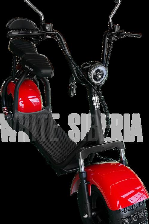 WS-light 2000w