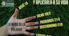 Usar la mano...