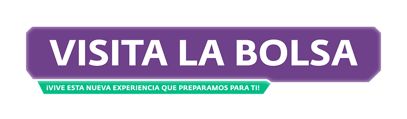 Visita-la-bolsa.png