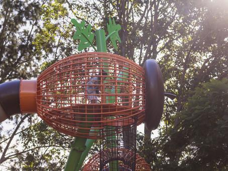 Western Springs / Te Wai Ōrea  Playground Opening