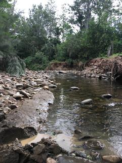 creek clay source.JPG
