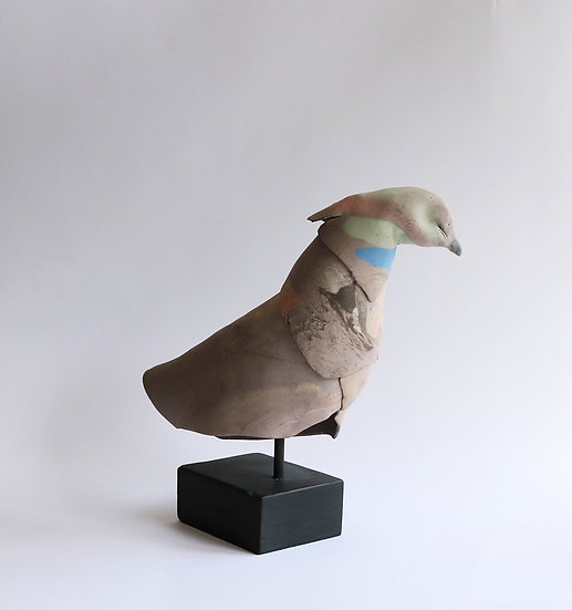 Rock Dove | By Cathy Butcher
