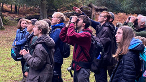 Young Person's New Forest Wildlife Camp 2021