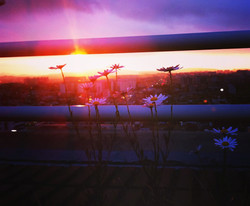 company rooftop