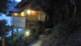 BELUM RAINFOREST - DATO' HAMIDAH (2).jpg