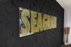 3017 edge seagrass 2019