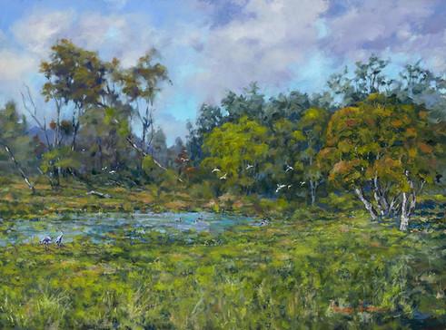 Joskeleigh Wetland
