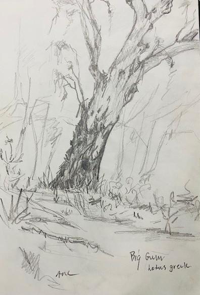 Drawing 33.jpg