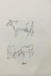 Drawing 43.jpg